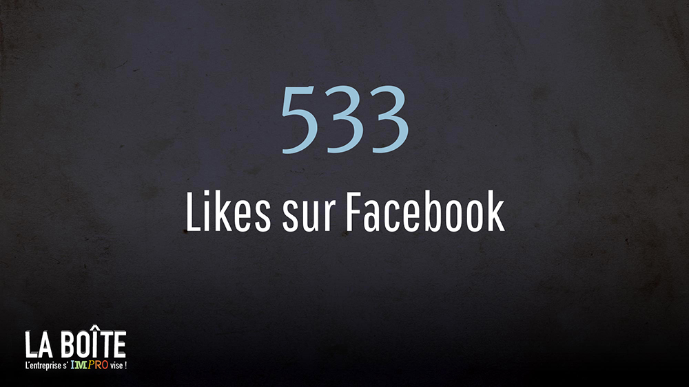 533 likes sur Facebook